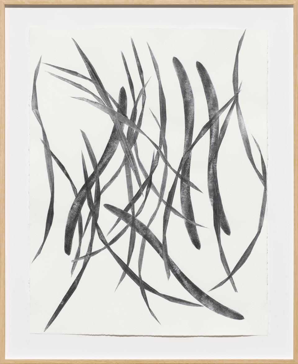 Frauke Dannert  Hortus, 2018  Paper Collage  65 x 50 cm 25 5/8 x 19 3/4 in