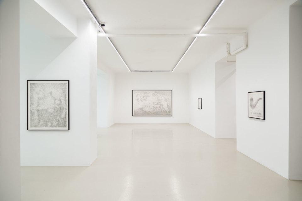 Maximilian Prüfer Installation View II, TIER, 2019