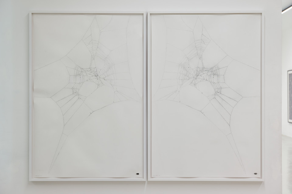 Maximilian Prüfer  Mothercity 1a, 2015  Naturantypie Spider webs on paper  134 x 90 cm 52 3/4 x 35 3/8 in