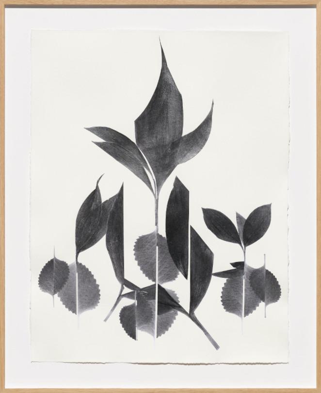 Frauke Dannert  Gloriette, 2018  Paper Collage  65 x 50 cm 25 5/8 x 19 3/4 in