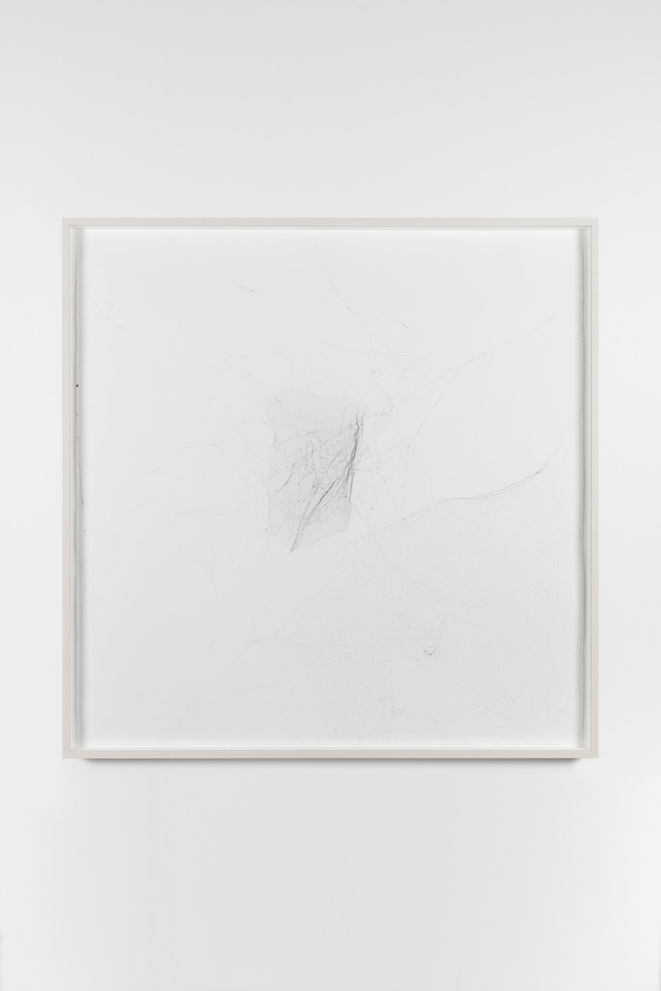 Tomás Saraceno Solitary, Semi-Social Mapping Of NGC 5128 And PKS 1322-427 By One Nephila Clavipes- One Week, Three Cryptophora Citricola- Two Weeks, 2015 Spider silk, ink, glue, paper (TS 187) 93 x 39 cm (framed) 36 5/8 x 15 3/8 in