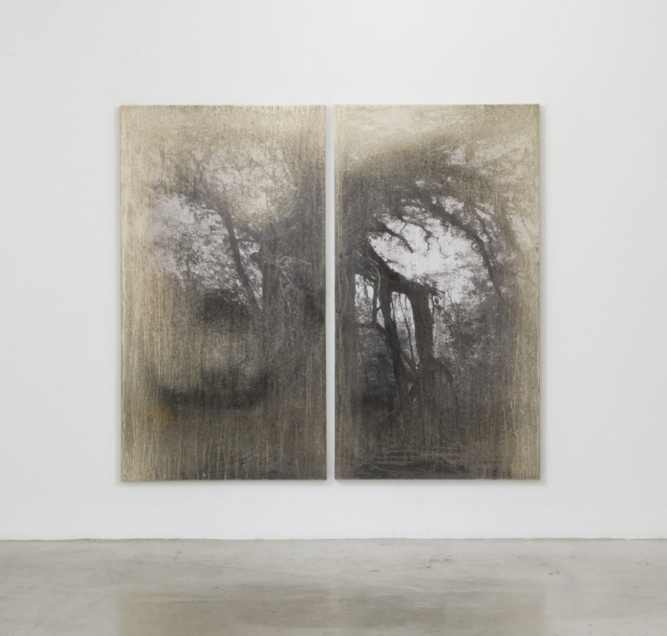 Artwork: Matthew Brandt  AgXBD751A (diptych), 2018  signed, titled and dated verso  silver on two silver gelatin prints (mounted on aluminum)  74 3/4 x 41 1/8 x 1 3/4 inches (189.9 x 104.5 x 4.4 cm) (each panel)