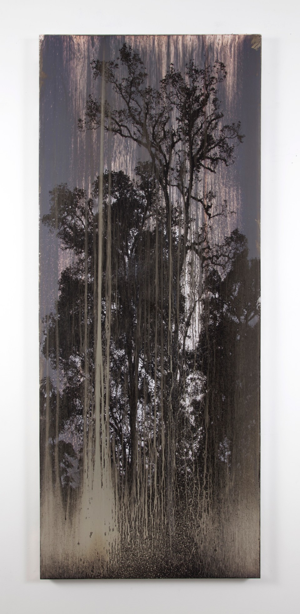 Artwork: Matthew Brandt  AgXB751B, 2019  signed, titled and dated verso  silver on silver gelatin print (mounted on aluminum)  75 1/2 x 30 1/2 inches (181.6 x 104.8 cm)