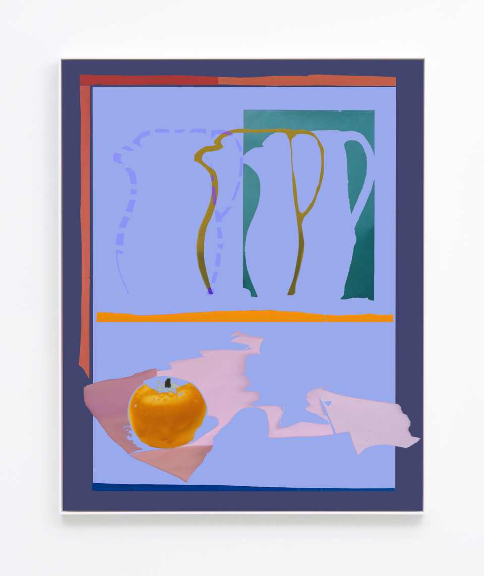 Image: Daniel Gordon  Tomato and Pitcher, 2017  signed and numbered verso  archival pigment print on canvas  49-5/8 x 39-5/8 inches  unique