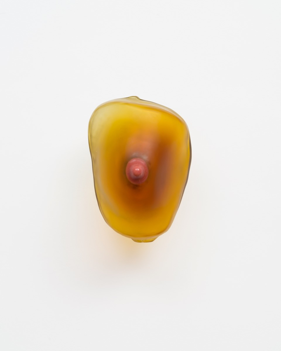 Image: Nevine Mahmoud  breast (Amber), 2018  (alternate view)