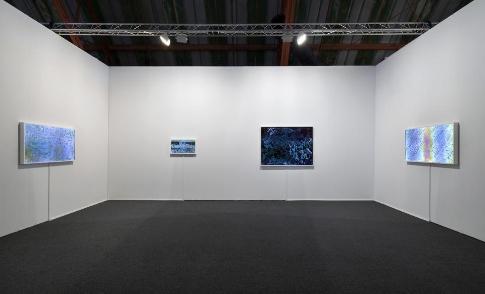 Art Los Angeles Contemporary 2015