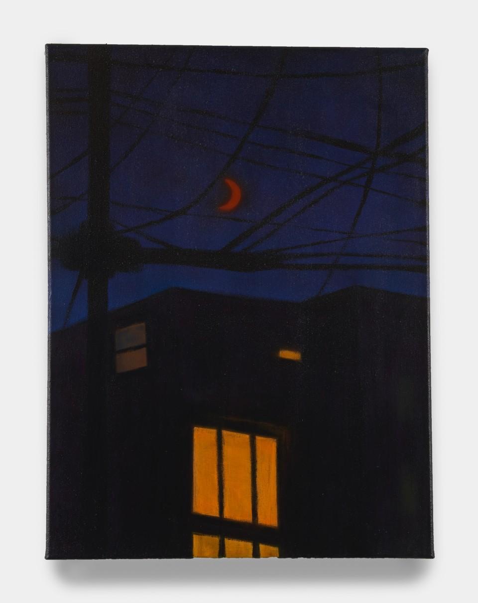 Gallery Platform.LA: Sung Hwa Kim 'Nocturne'