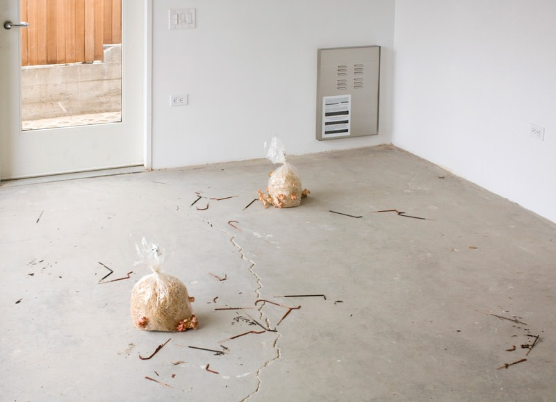 Image: Passive Collect, curated by Jesse Stecklow • Chin's Push, Los Angeles • July 11 - August 2, 2014