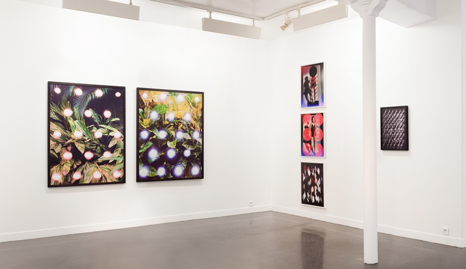 Image: Hannah Whitaker: the fifth hammer • Galerie Christophe Gaillard, Paris • November 16 - january 11, 2013