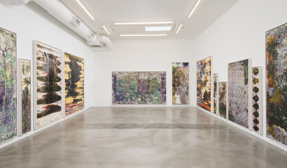 Image: Matthew Brandt: Pictures from Wai'anae • M+B, Los Angeles • September 19 - October 31, 2015