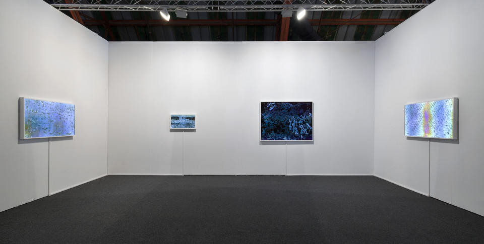 Image: Art Los Angeles Contemporary 2015