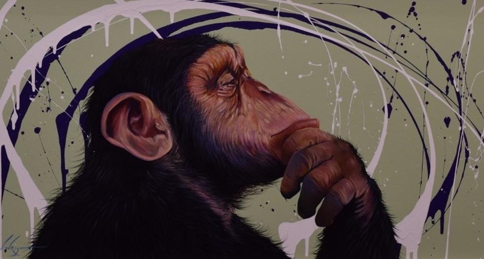 Darwin by Simon Wright