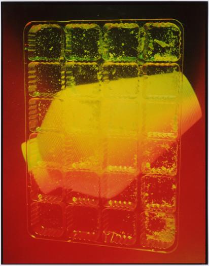Jimmy DeSana, Vase, 1985