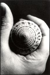 Paolo Gioli, La Conchiglia Dissoluta, 1990