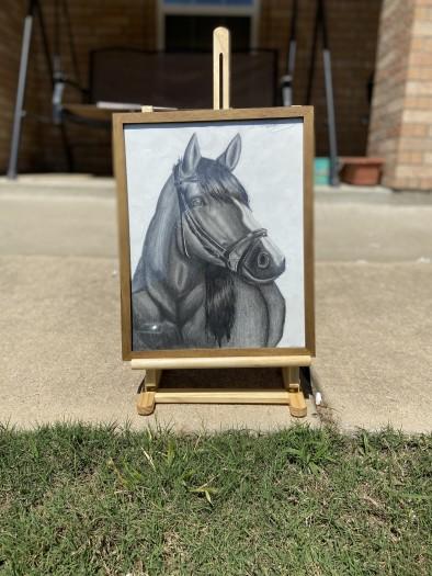 Matthew Torres, A Spirited Stallion, 2020