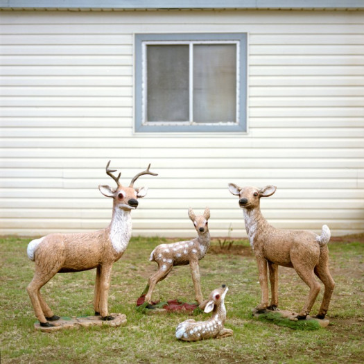 Jill Johnson, Oh Deer
