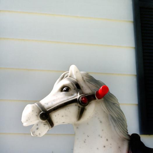Jill Johnson, Wonder Horse