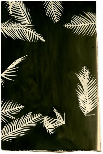 Bruno Roels, Palmograph #3, 2019