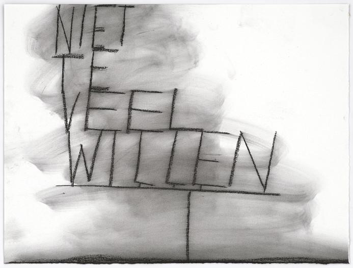 Peter Morrens, Niet te veel willen (Not wanting too much), 2013-14
