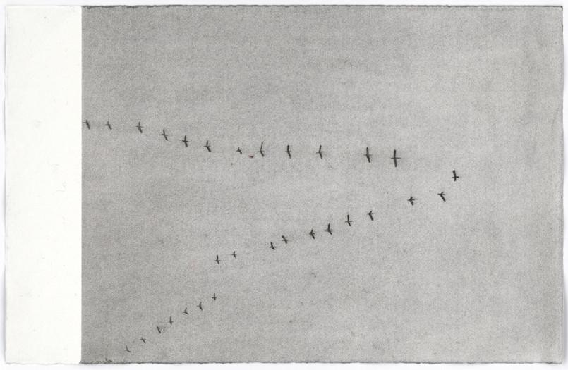 Peter Morrens, Dead End, 2013-14
