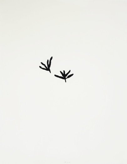 Jürgen Partenheimer, Seeds and Tracks, #6, 2012