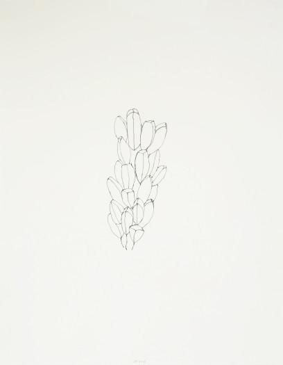 Jürgen Partenheimer, Seeds and Tracks, #4, 2012