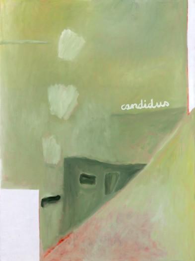 Agnes Maes, CANDIDUS et le retour à droite, 1998
