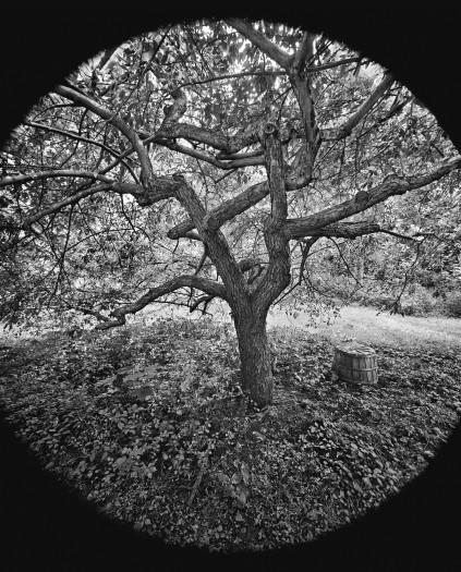 Scott Mead, Autumn, 1974
