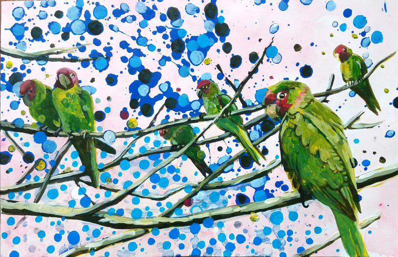 E. Tilly Strauss, Blue Dot Parakeet, 2019