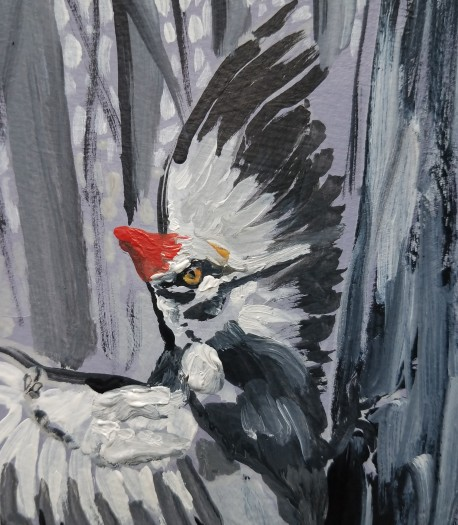 E. Tilly Strauss, Pileated Woodpecker, 2019