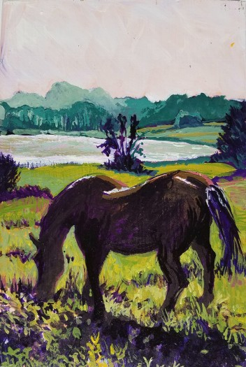 Horse grazing at Dawn