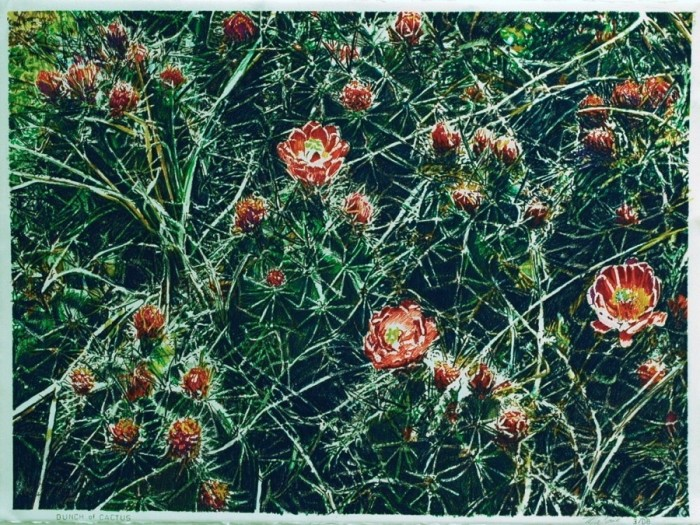 Jim Malone, Bunch of Cactus West Texas Landscape