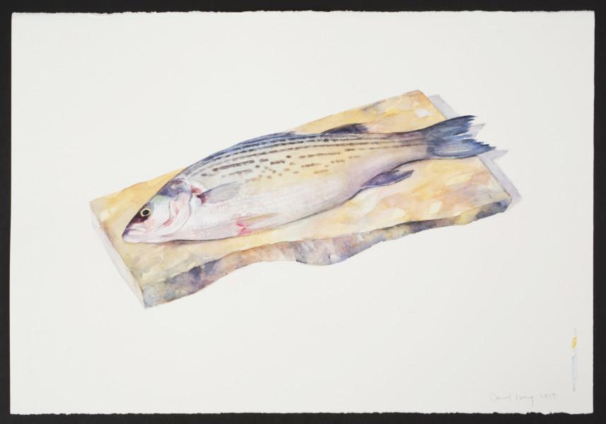 Carol Ivey, Sea Bass, 2019