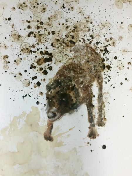 <span class=&#34;artist&#34;><strong>Cindee Klement</strong></span>, <span class=&#34;title&#34;><em>shake shake shake chocolate II</em>, 2015</span>