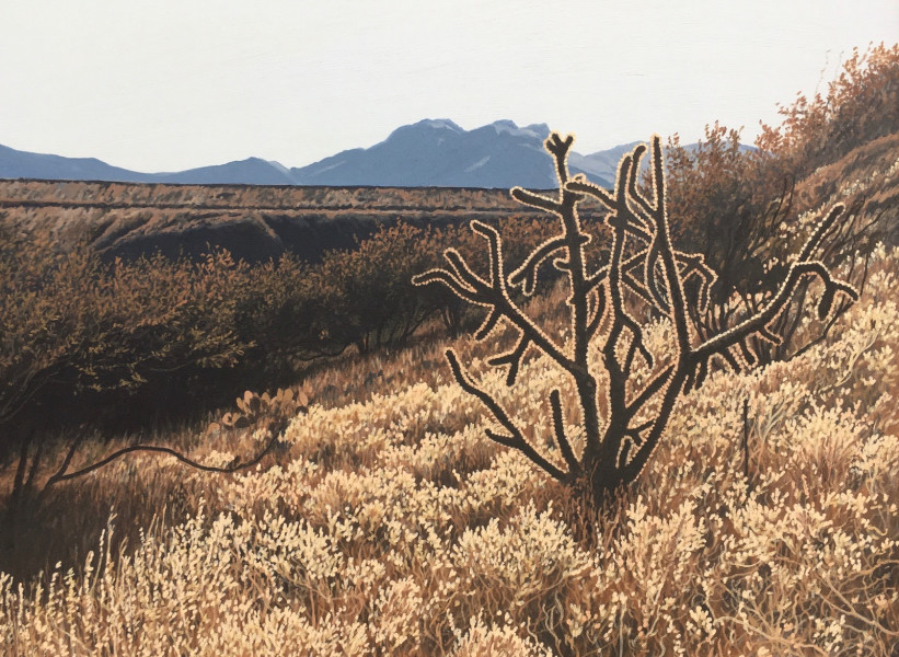 Dennis Blagg, Cholla Light