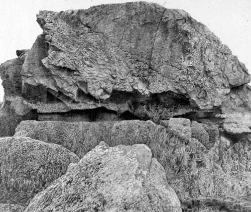 Woodrow Blagg, Sea Wall, 2004