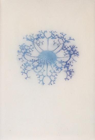 Jo-Ann Mulroy, Dandelions 1, 2008