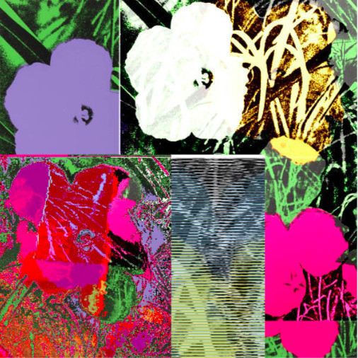 Cornelia Sollfrank, anonymous-warhol_flowers@Aug_31_23.55.30_2018
