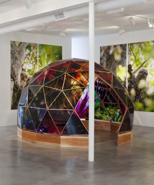 Lisa Eisner Psychonaut Dome clear Fujiflex c-prints, laminate, plexiglass, redwood and scent 140 x 140 x 98 inches