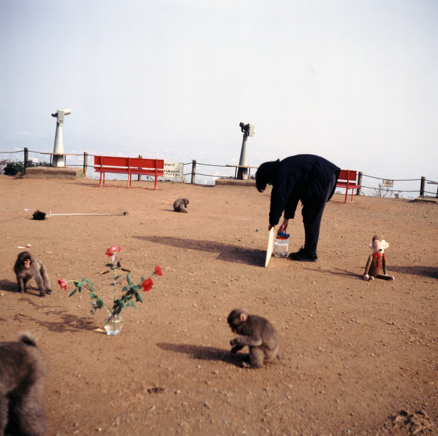 <span class=&#34;title&#34;>Gift: Exhibition for the Monkeys<span class=&#34;title_comma&#34;>, </span></span><span class=&#34;year&#34;>1992</span>