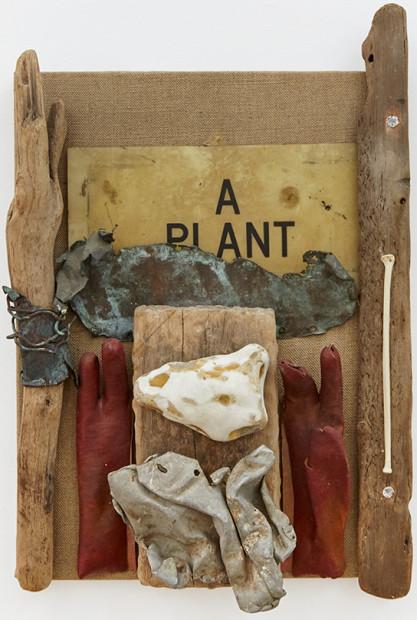 A PLANT, 1988