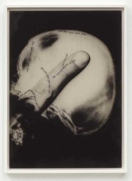 Craniologia, 1973