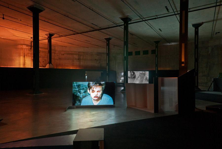 <em>Washing Brain and Corn [Installation]</em>, 2012