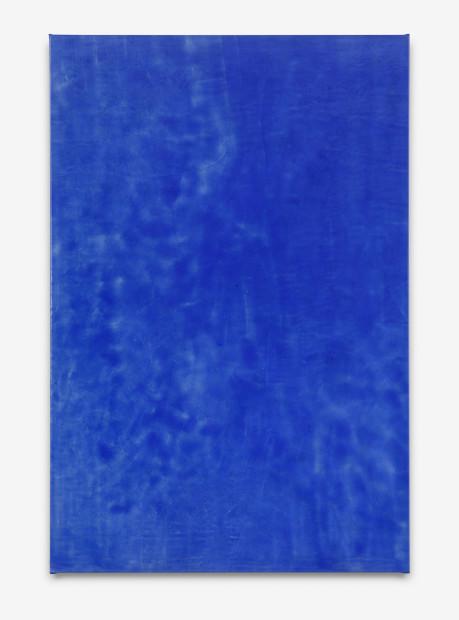 Blue Xenoestrogens, 2015