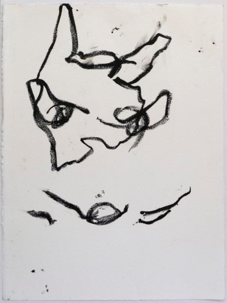 Reanimation performance drawing (Dog Drawing), 2014