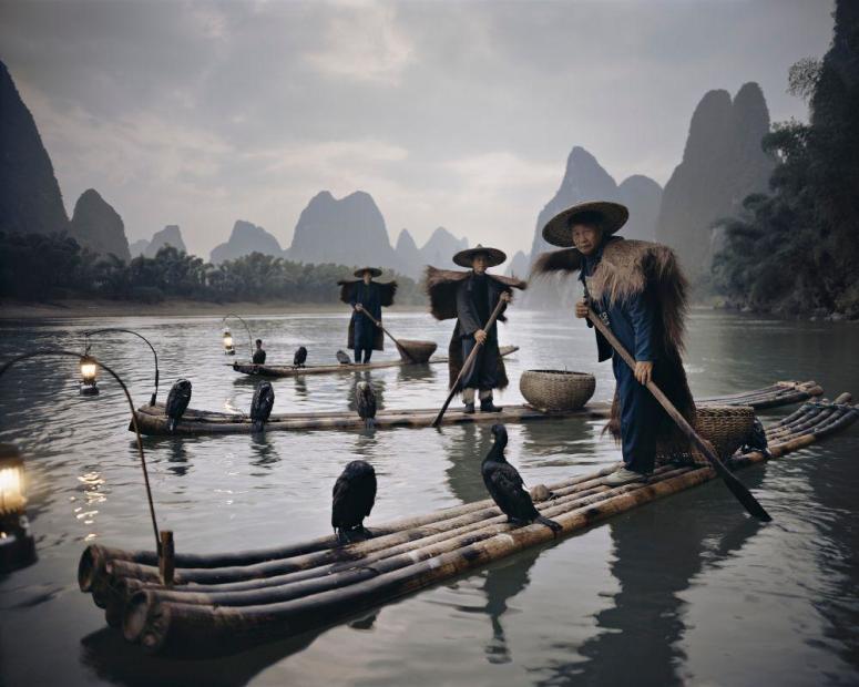 China XXII 467, Yangshuo Comorants, 2017