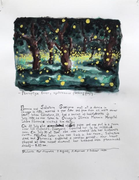 Johan Grimonprez, Pteroptyc Tener ( Synchronous Flashing Fireflies ) #1, 2018
