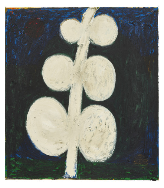 <span class=&#34;artist&#34;><strong>Tuukka Tammisaari</strong></span>, <span class=&#34;title&#34;><em>Plant Motif (Medium)</em>, 2018</span>