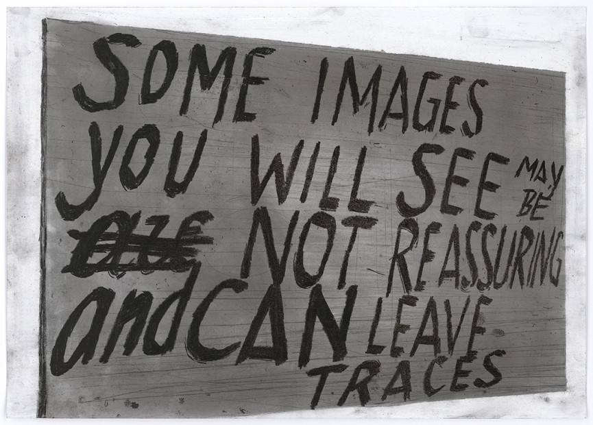 Untitled (Some images you will see may be not reassuring and can leave traces), s.d.