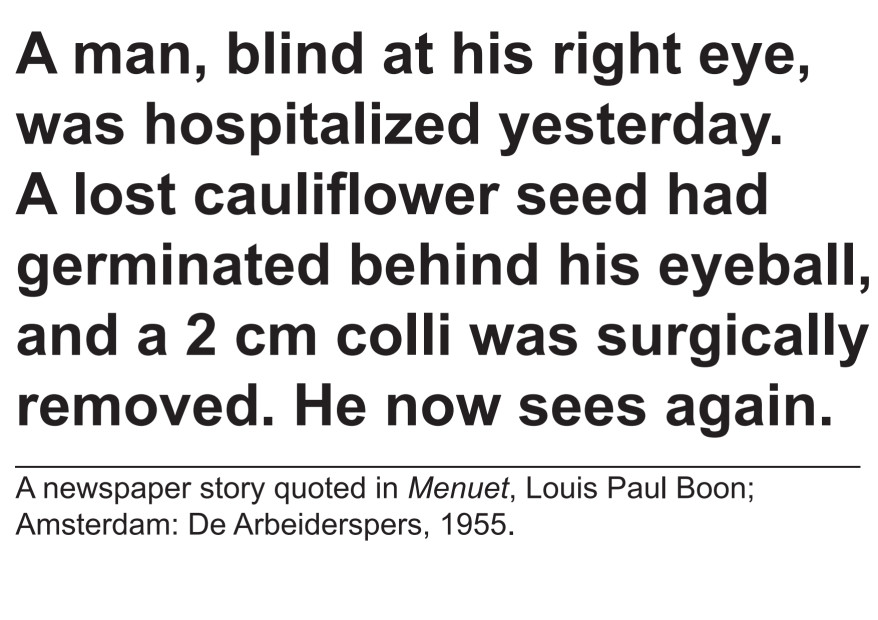 Johan Grimonprez, A lost cauliflower seed had germinated behind his eyeball